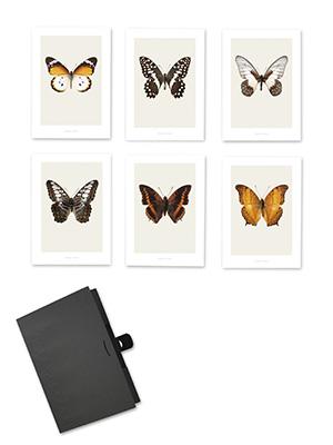 bilder rahmen skandinavische wohnaccessoires. Black Bedroom Furniture Sets. Home Design Ideas